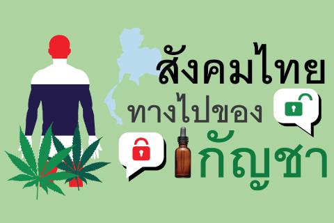 สังคมไทยทางไปของกัญชา
