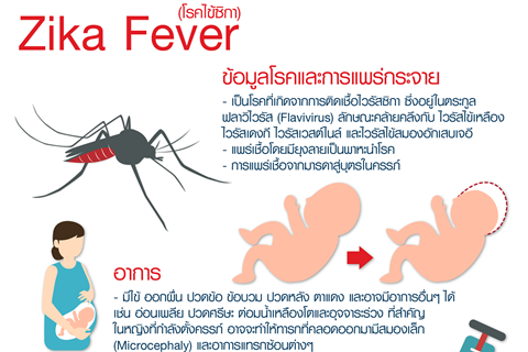 Zika Fever (โรคไข้ซิกา)