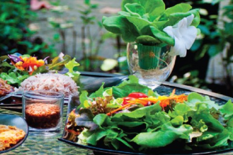 เก็บผักมาจัดจาน..เสิร์ฟเพื่อสุขภาพ