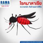 """""""โรคมาลาเรีย"""" ระบาดหนักภัยร้ายพรากชีวิต"""
