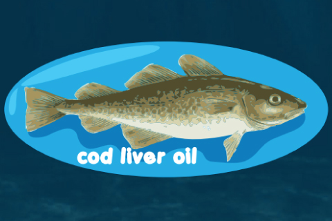 ประโยชน์ของน้ำมันตับปลา