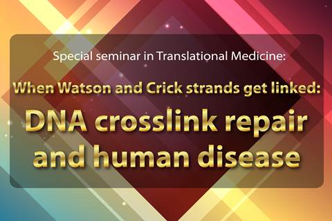 """When Watson and Crick strands get linked: DNA crosslink repair and human disease"""