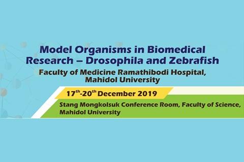 Model Organisms in Biomedical Research - Drosophila and Zebrafish