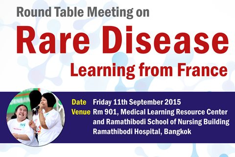 Round Table Meeting on Rare Disease: Learning from France