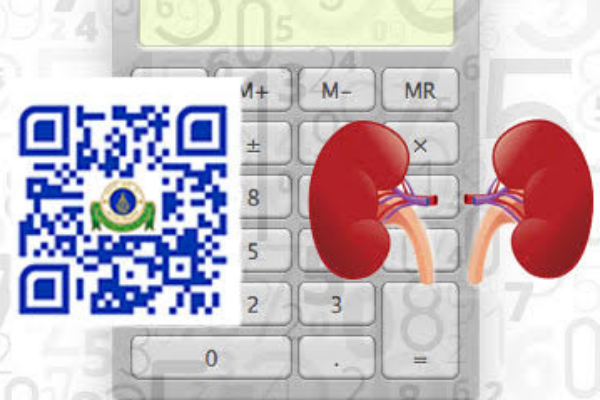 Ramathibodi Launches Online Kidney Disease Risk Scoring App