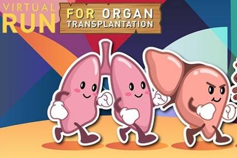 Run for kidney transplantation
